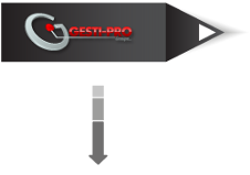 Flèche Gesti-Pro